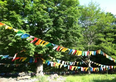 Prayer Flags, KTD